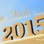Anul 2015