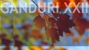Ganduri XXII