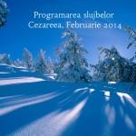 Programarea slujbelor, Cezareea, Februarie 2014