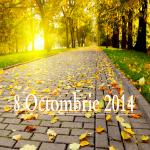 Anunţuri 8 Octombrie 2014