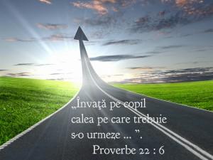 Proverbe 22.6