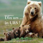 Psalmul 84.5-7, Din urs în urs